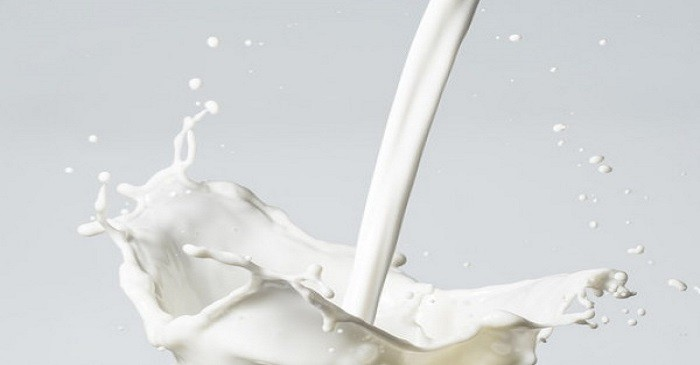 Milk products - an essential part of our diet: