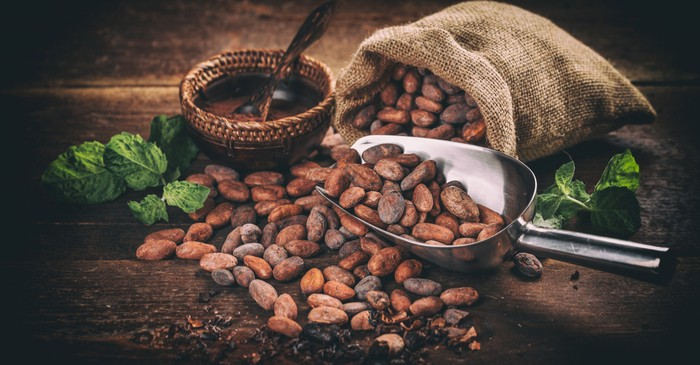 Cocoa demand globally increasing