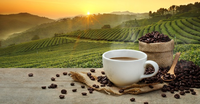 Commodity - Coffee demand, production and market summary