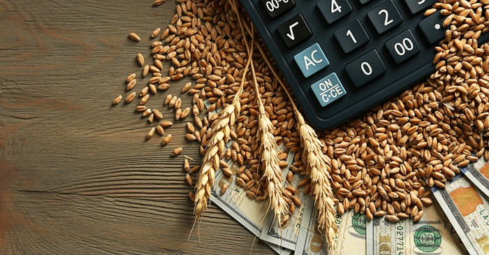 Impact of trade war, GM and weather conditions on wheat trade