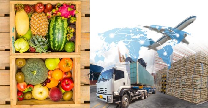 Impact of extra –tariffs on US fruit exports