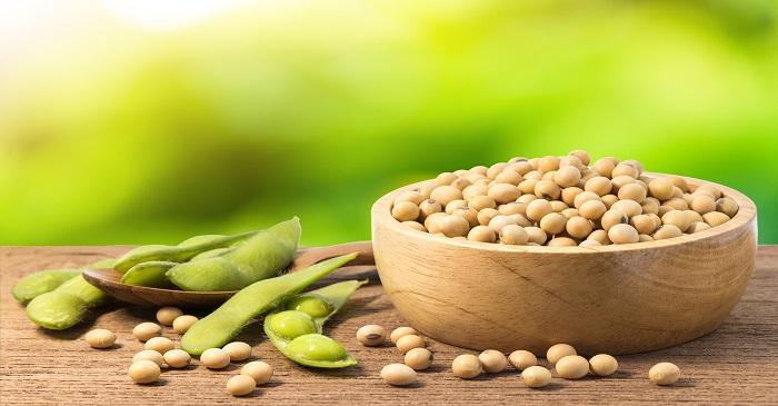 Net sale of US soybean reduced 33.23 per cent in October