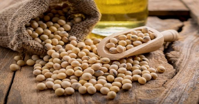 Trade war impact on soybean exports