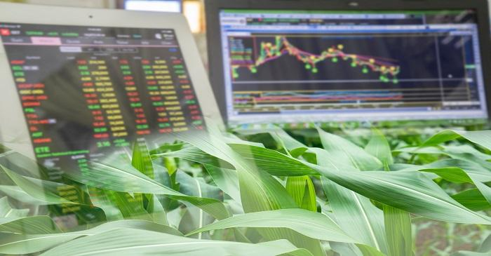 99 Alternatives Investment in commodities