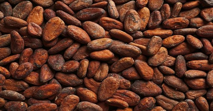 99 Alternatives EU regulations to limit cadmium in cocoa begins January