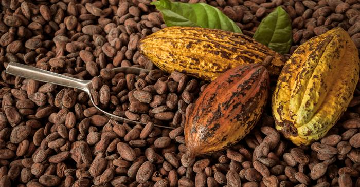Cocoa Futures Return 28 per cent in 2018