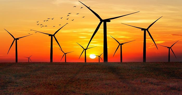 Companies rushing to secure wind power at competitive price