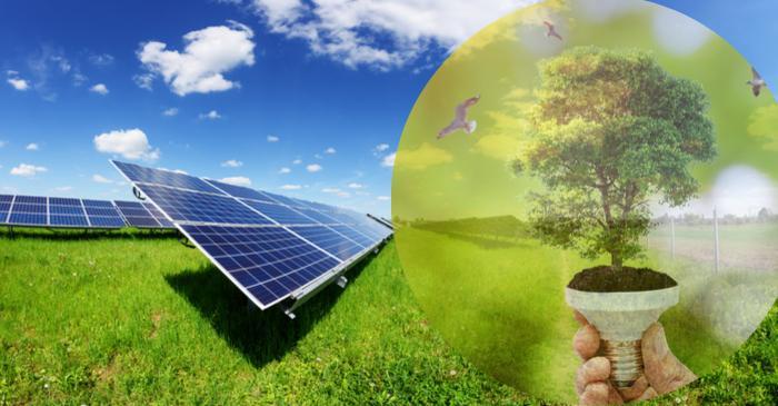 EU firms endorse Zero Carbon projects to meet emission targets