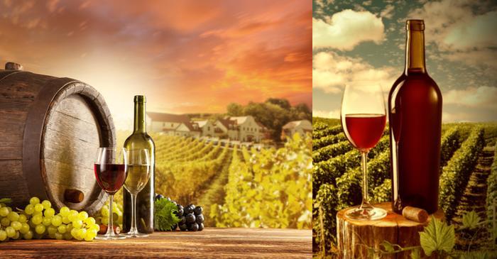 Wine Invest