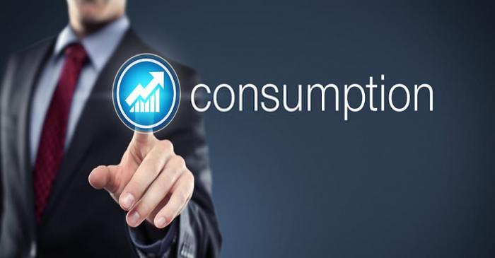 what is consumption