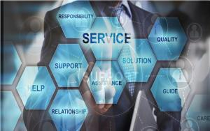 Business Services and support sector