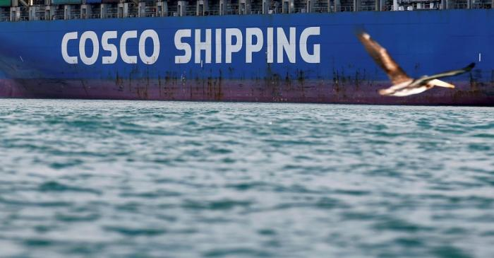 FILE PHOTO: A bird flies by a China Ocean Shipping Company (COSCO) container ship at the San