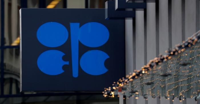 FILE PHOTO: The logo of the Organisation of the Petroleum Exporting Countries (OPEC) sits