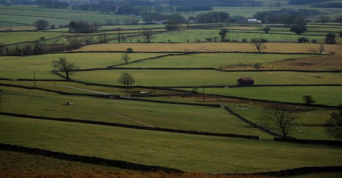 FILE PHOTO: Farmers fields are seen near Appleby in Cumbria, Britain