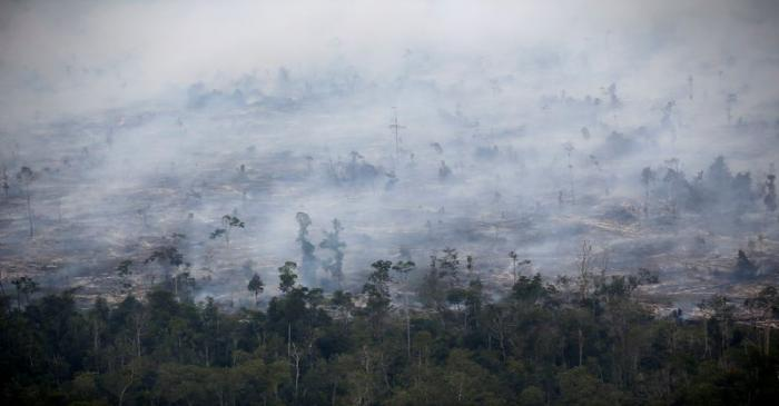 Smoke covers forest during fires in Kapuas regency near Palangka Raya in Central Kalimantan