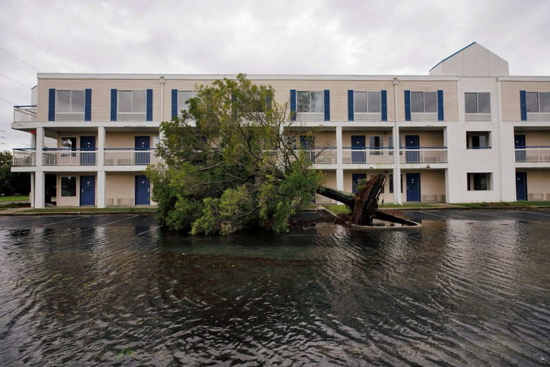 FILE PHOTO: A fallen tree and flood waters sit in a hotel parking lot after Hurricane Dorian