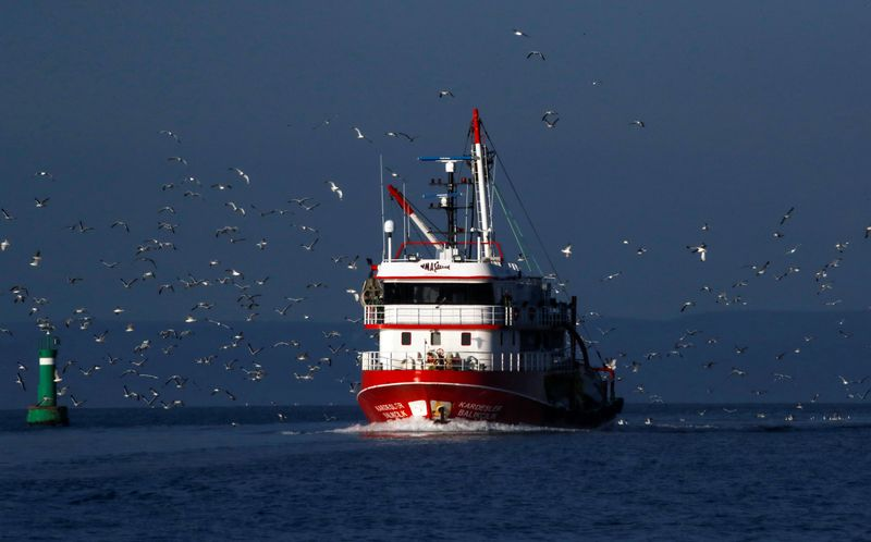 FILE PHOTO: Seagulls fly over a fishing boat on the waters of the North Aegean Sea off the