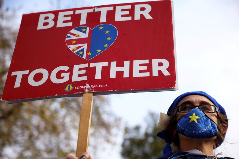 FILE PHOTO: An anti-Brexit protester holds a sign as she demonstrates near the conference