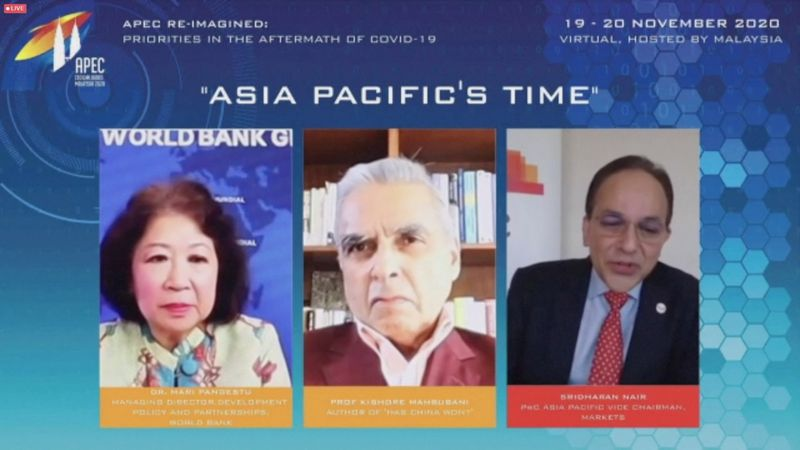 Leaders of APEC economies and business executives speak at the CEO Dialogue forum via video